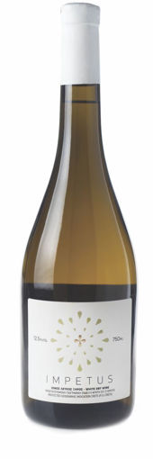 Picture of Impetus White 2019 - Titakis Wines