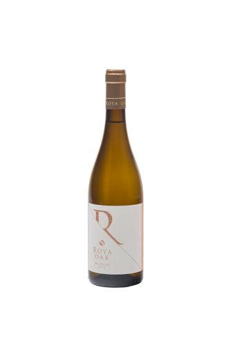 Picture of Roya oak- 2019 -Nopera winery samos